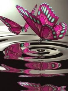 purple_butterfly-225x300